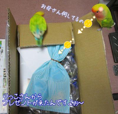 りっこさんからプレゼント1