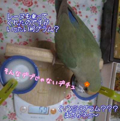 体重測定4