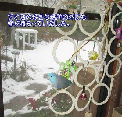 雪ですね3