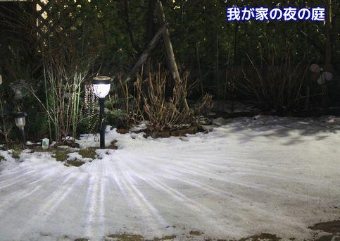 雪のある庭