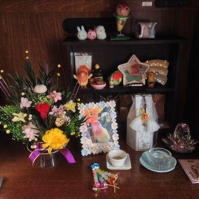 ボンちゃんの祭壇