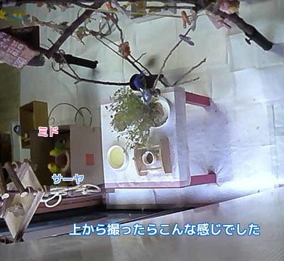 監視カメラ画像2