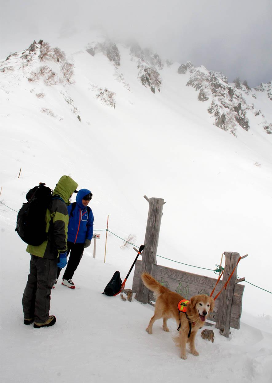 全国雪崩 2016 (42)