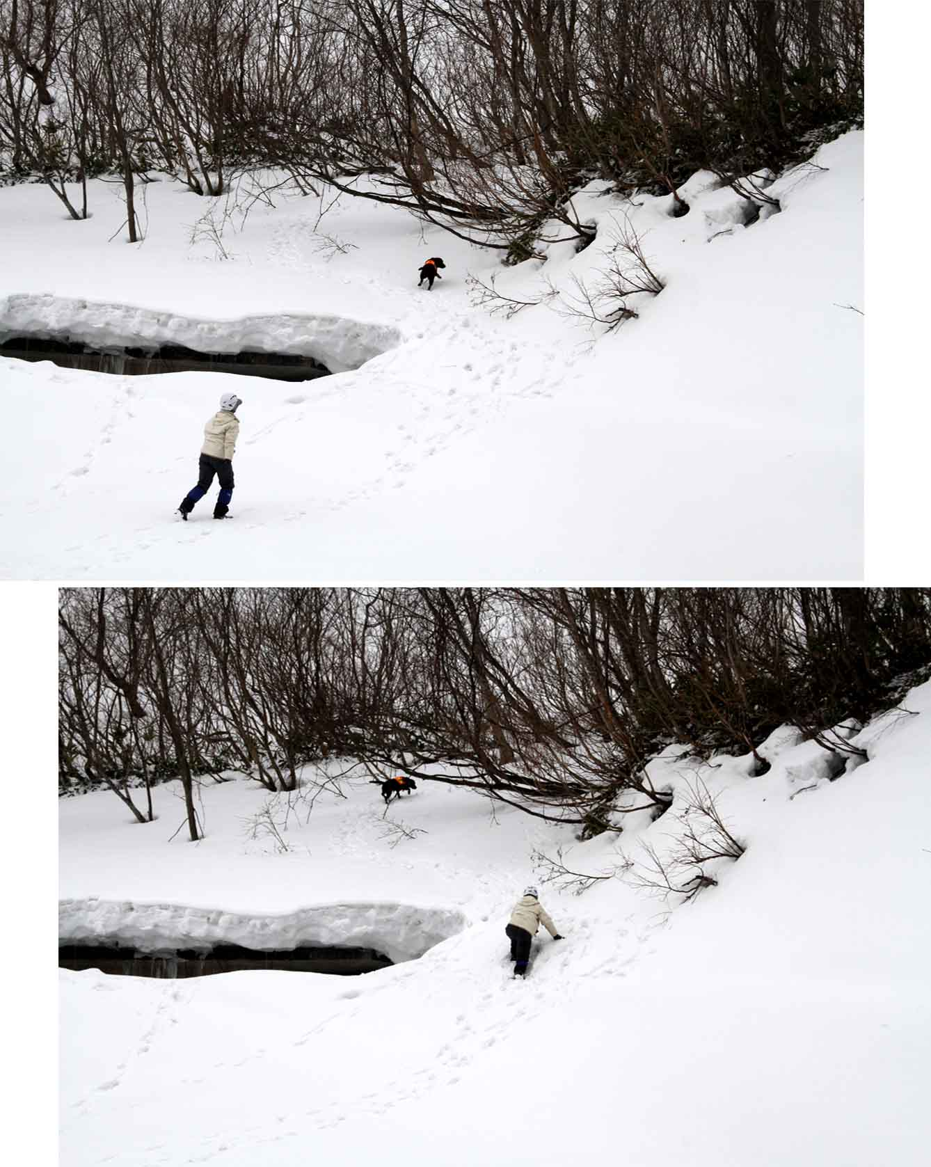 谷川岳雪中訓練 (39)
