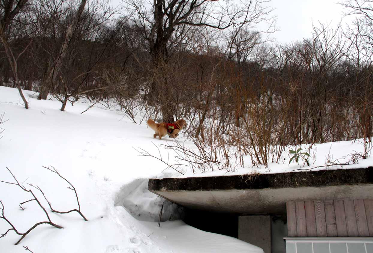谷川岳雪中訓練 (41)