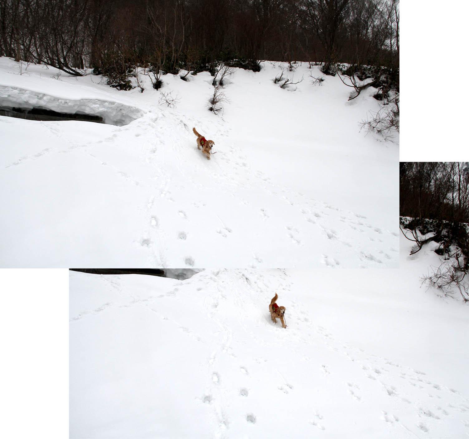 谷川岳雪中訓練 (43)