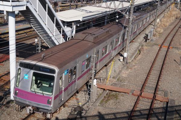2016-03-15 メトロ8117F 急行中央林間行き