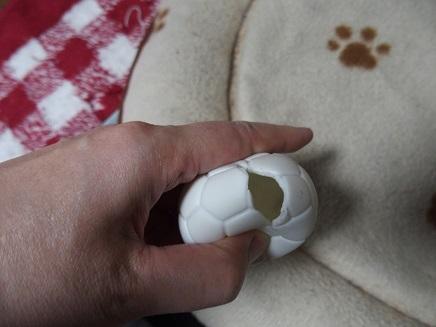 マロちゃんのボール
