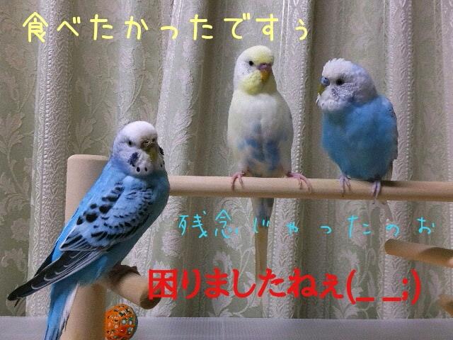 20160314192531da3.jpg