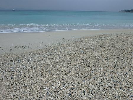 いつもの海岸