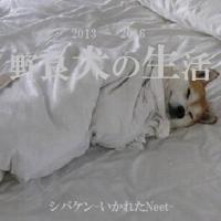 シバケン-いかれたNeet-