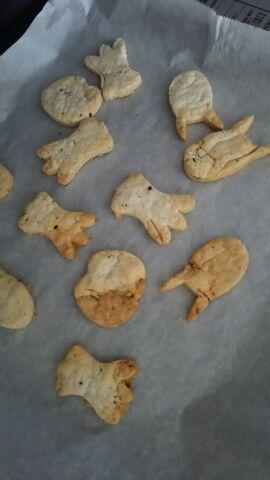 160229cookie.jpg