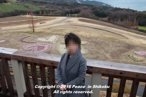 awajijjii-0118-1841.jpg