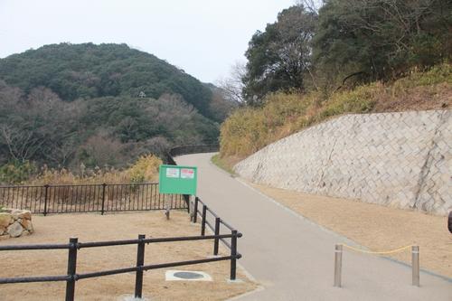ijawa-0201-1858.jpg
