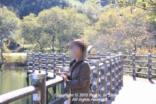 kouyou-1116-9069.jpg