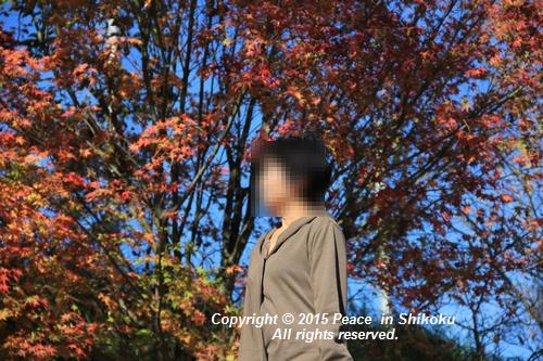 kouyou-1116-9109.jpg