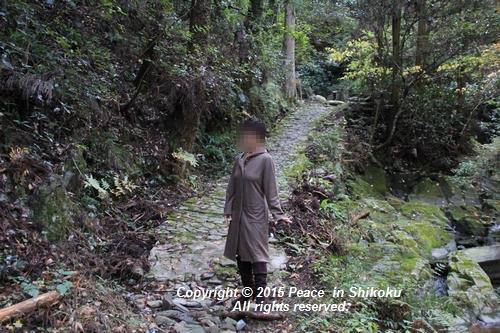 kouyou-1116-9220.jpg