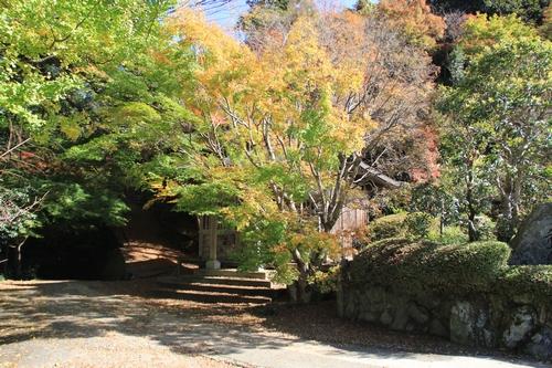kouyou-1116-9229a.jpg