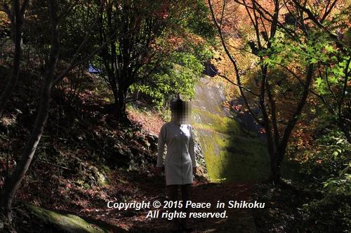 kouyou-1116-9245a.jpg