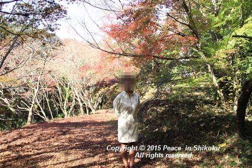 kouyou-1116-9274a.jpg