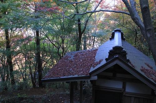 kouyou-1116-9303a.jpg