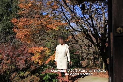 kouyou-1116-9311a.jpg