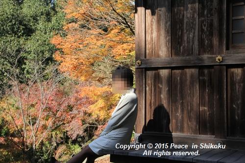 kouyou-1116-9342.jpg