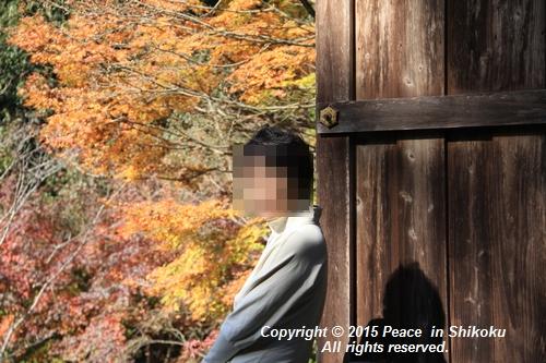 kouyou-1116-9345.jpg