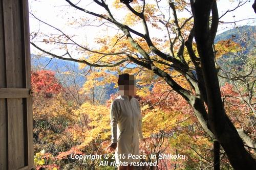 kouyou-1116-9346.jpg