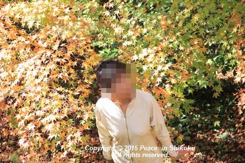kouyou-1116-9376.jpg
