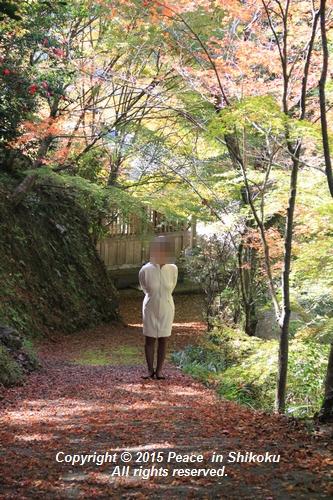 kouyou-1116-9419.jpg
