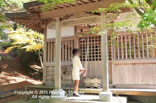 kouyou-1116-9424.jpg