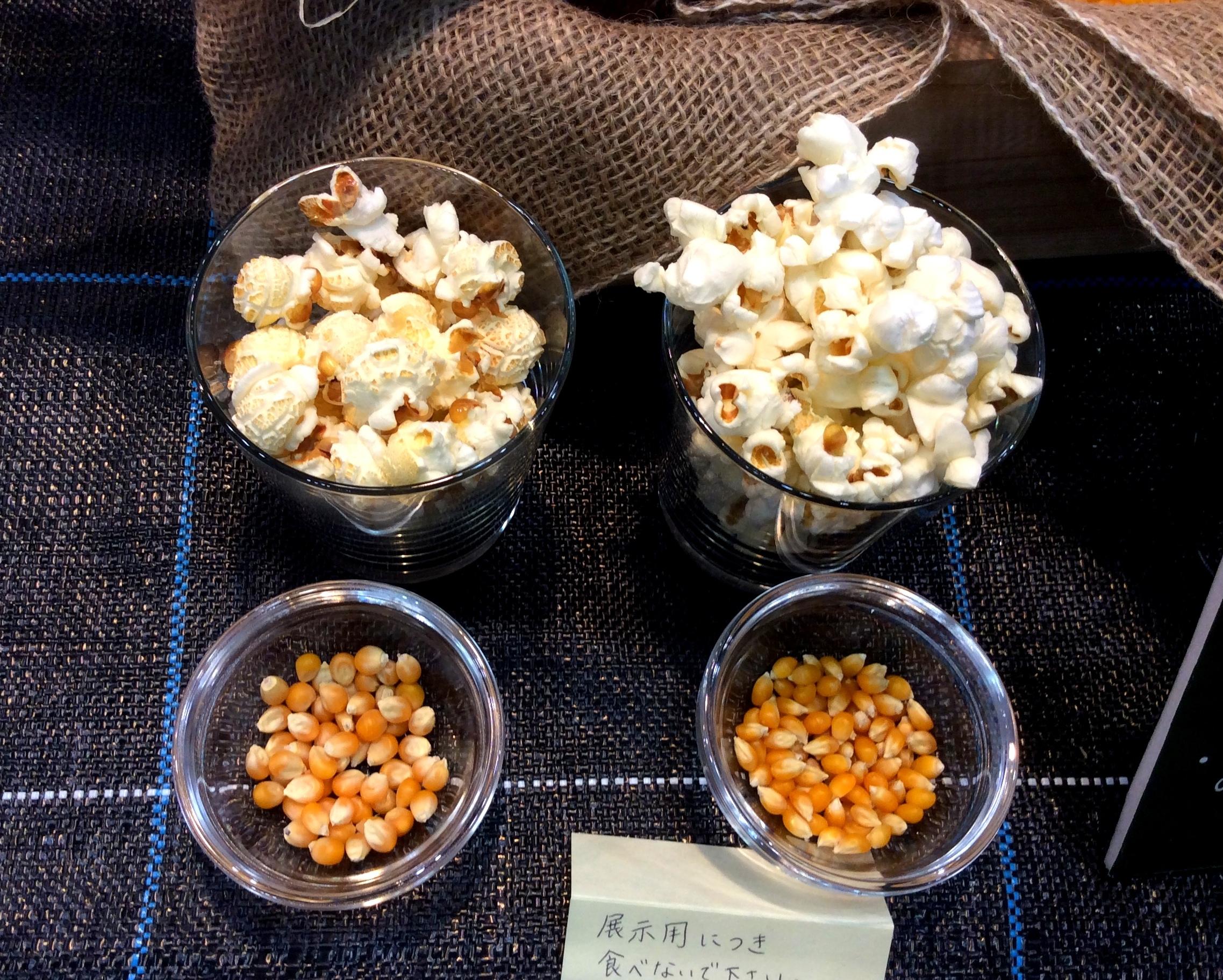 popcorn12.jpg