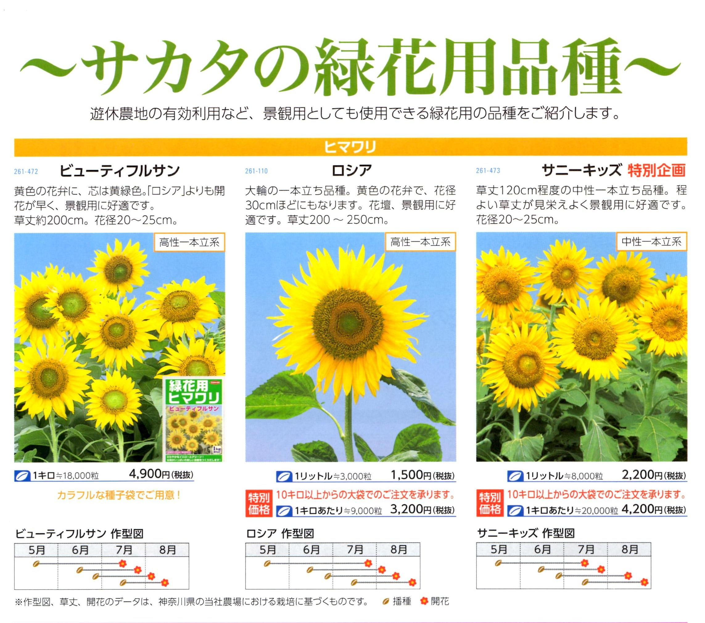 sunflower-green.jpg