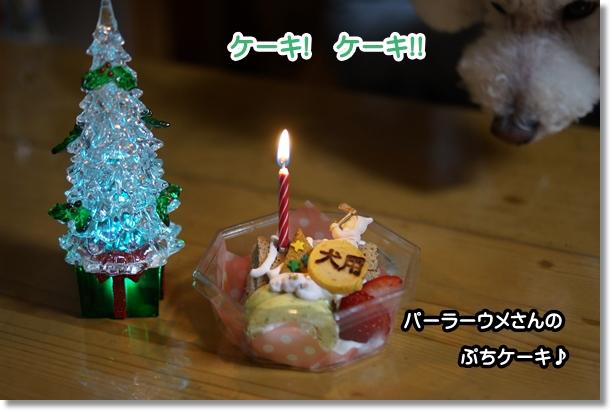 イブにケーキ♪2