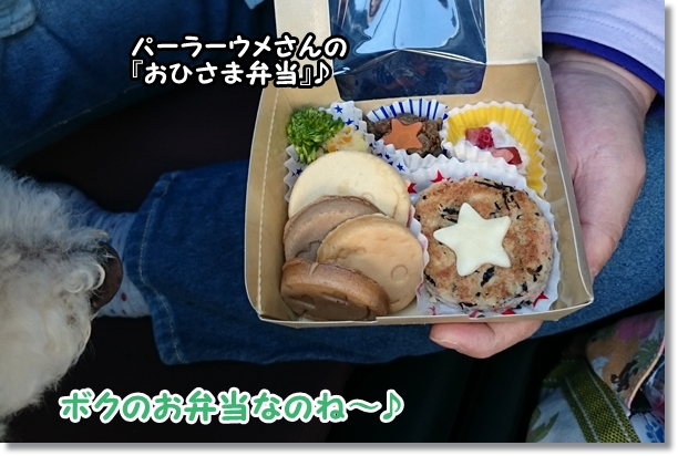 お弁当♪1