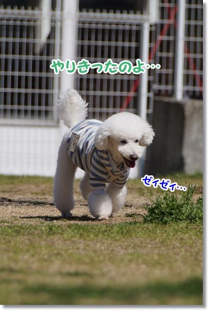 キレイにジャンプ!!4
