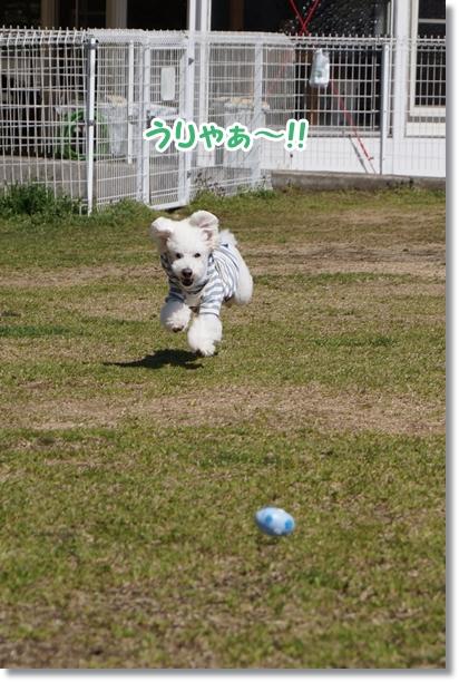 キレイにジャンプ!!2