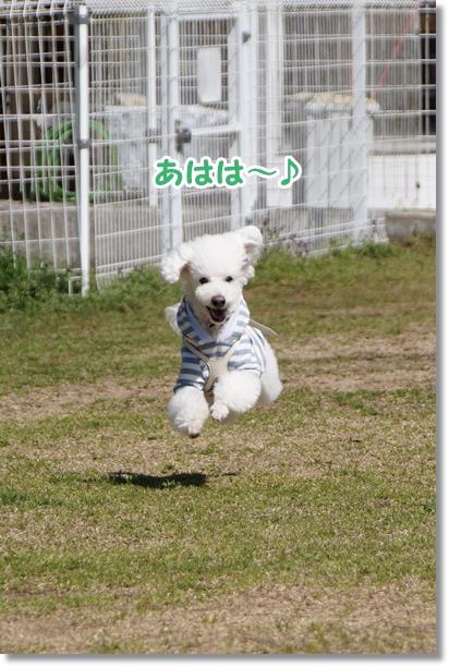キレイにジャンプ!!3