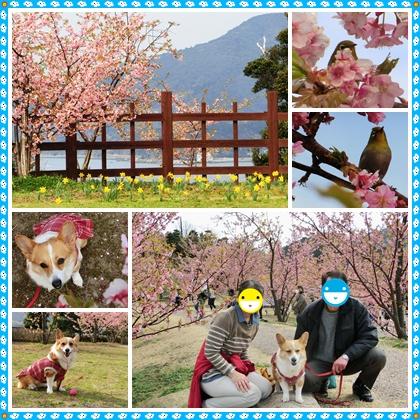 上関城山歴史公園2