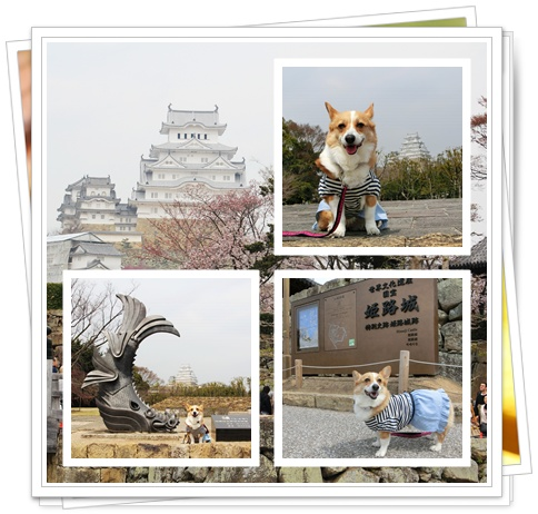 姫路旅行3