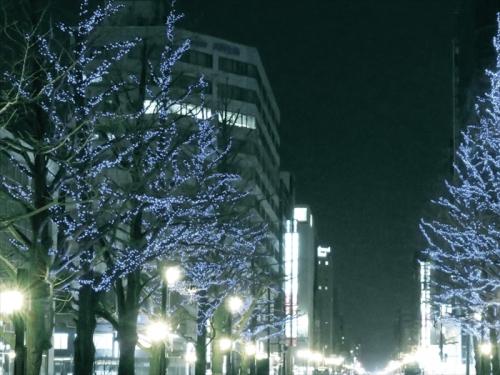 IMG_0528_R.jpg