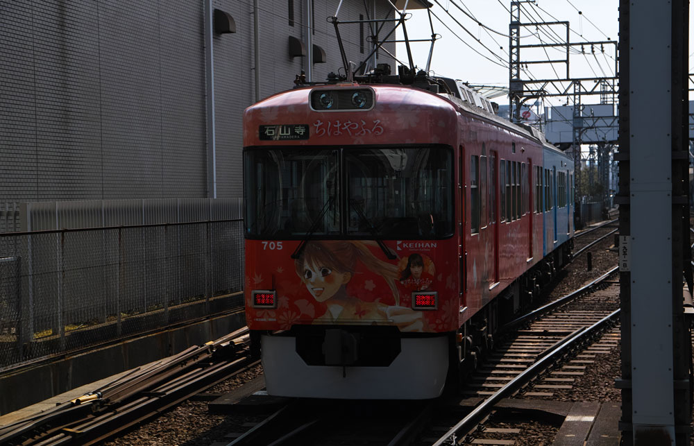 SDIM2519-1-1.jpg