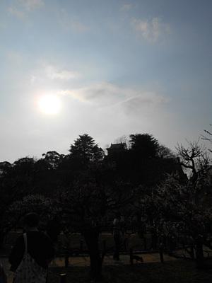 DSCN1696.jpg