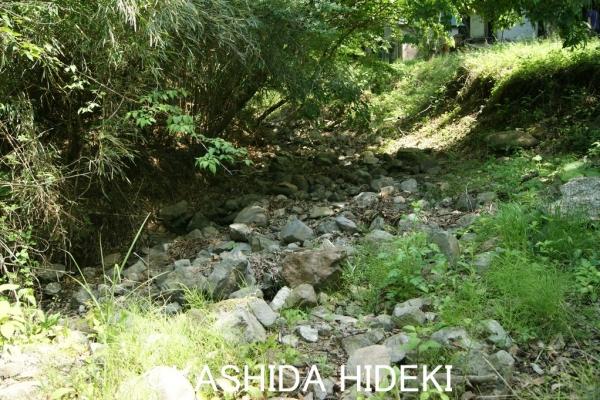 秋山カントリークラブ渇水