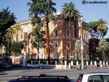 Rome ホテルVilla Torloniaそばの街路樹は南国ムードdownsize