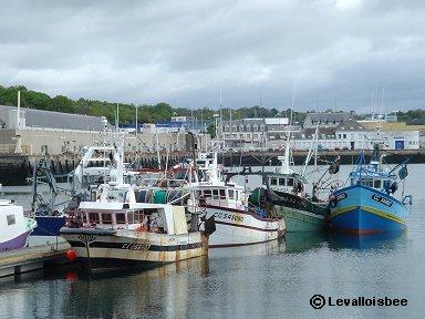 Concarneau漁港の風景downsize