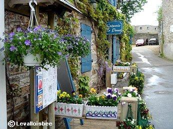 要塞島旧市街Ville closeで出会った花いっぱいの家downsize