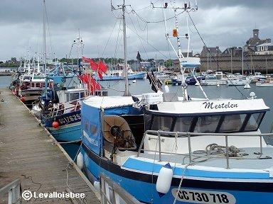 コンカルノー港に舫う漁船たちdownsize