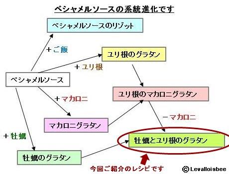 ベシャメルソースの系統進化牡蠣ユリ根グラタン